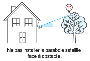 Obstacle face à la parabole satellite bfsat.fr