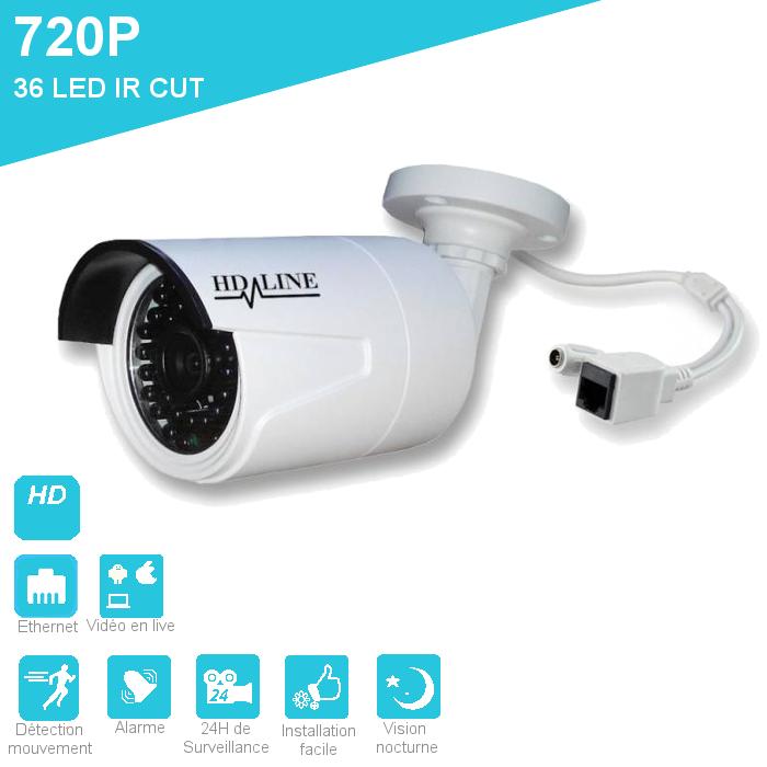 Caméra IP 1250DC composant le kit de vidéosurveillance 8 caméras IP (dômes et tubes) bfsat.fr