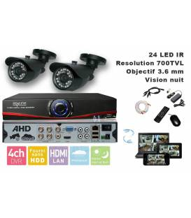 Kit Security Camera DVR 4 Output, 2 Cameras WP-500B, 2x 20m cable BNC, 1 adaptator 4in1, 1 Power Supply 5A